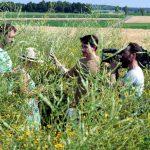 Bienenstrom: Xenius Fernsehteam in Schelkingen