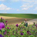 Blühpate Landwirt Herr Hiller im Bienenstorm Blühacker