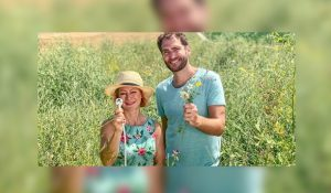 Xenius Beitrag Bienenstrom