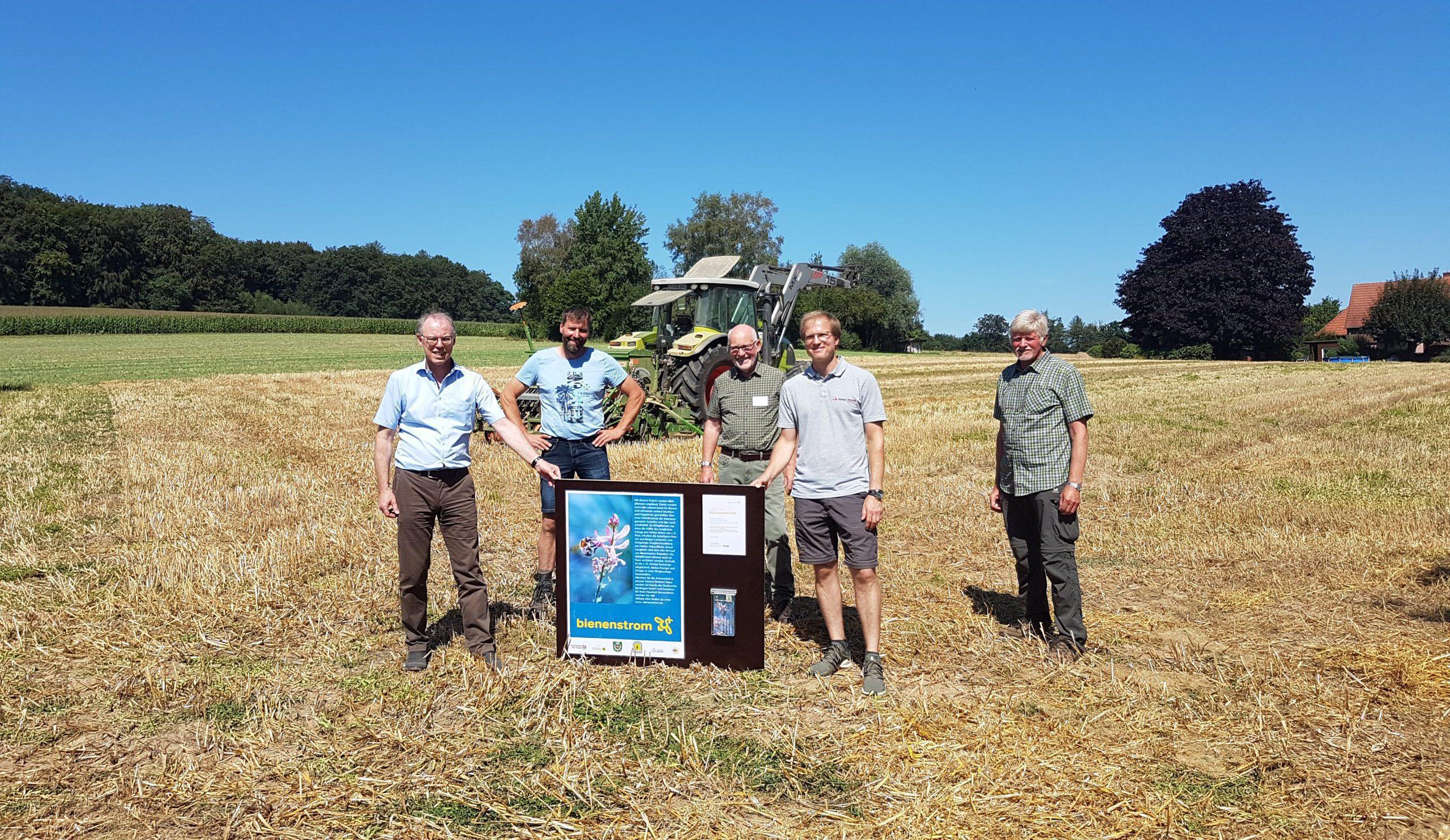 Beitragsbild Erste Blühfelder außerhalb Baden-Württemberg